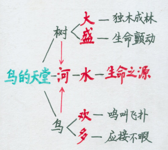 《鸟的天堂》板书设计之一_四年级语文_沪江